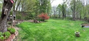 Grounds_2